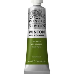 Winsor&Nevton - Winton Yağlı Boya 599 Sap Green (37) 37 ml