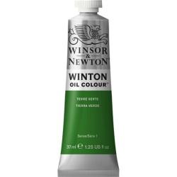 Winsor&Nevton - Winton Yağlı Boya 637 Terre Verte (39) 37 ml